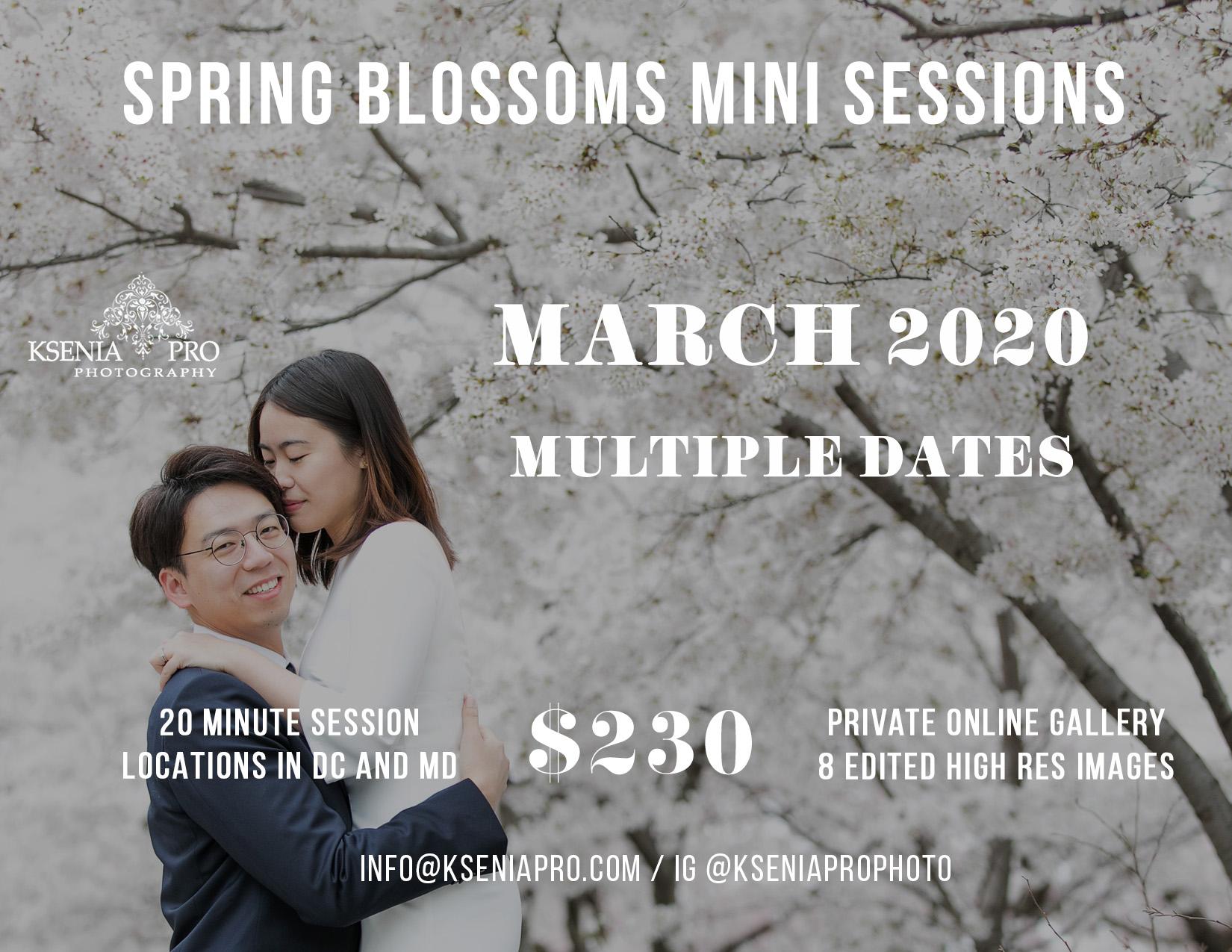 spring-mini-sessions-2020-cherry-blossoms-washington-dc-md-ksenia-pro-photography